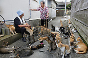 Aoshima, Ehime prefecture, September 4 2015 - Local residents and some of the numerous cats of Aoshima island,<br /> Aoshima (Ao island) is one of the several « cat islands » in Japan. Due to the decreasing of its poluation, the island now host about 6 times more cats than residents.