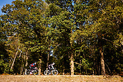 Racefietsers rijden door het Nationaal Park De Veluwezoom bij Rheden. Het is het eerste nationaal park van Nederland en is in zijn geheel eigendom van Natuurmonumenten.<br /> <br /> Road cyclists ride at the National Park De Veluwezoom near Rheden. It's the first Dutch national park and is owned by Natuurmonumenten.