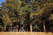 Racefietsers rijden door het Nationaal Park De Veluwezoom bij Rheden. Het is het eerste nationaal park van Nederland en is in zijn geheel eigendom van Natuurmonumenten.<br /> <br /> Road cyclists ride at the National Park De Veluwezoom near Rheden. It's the first Dutch national park and is owned by Natuurmonumenten.