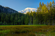 Mt. Rainier National Park - WA