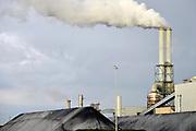 Nederland, Rotterdam, 12-5-2017 Moderne elektriciteitscentrale van Eon, E-on.Kolencentrale, co2 uitstoot, kolen, kolengestookte, op de Maasvlakte. the new land. Foto: Flip Franssen