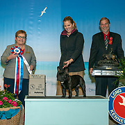Long Beach Kennel Club 01/12/2019