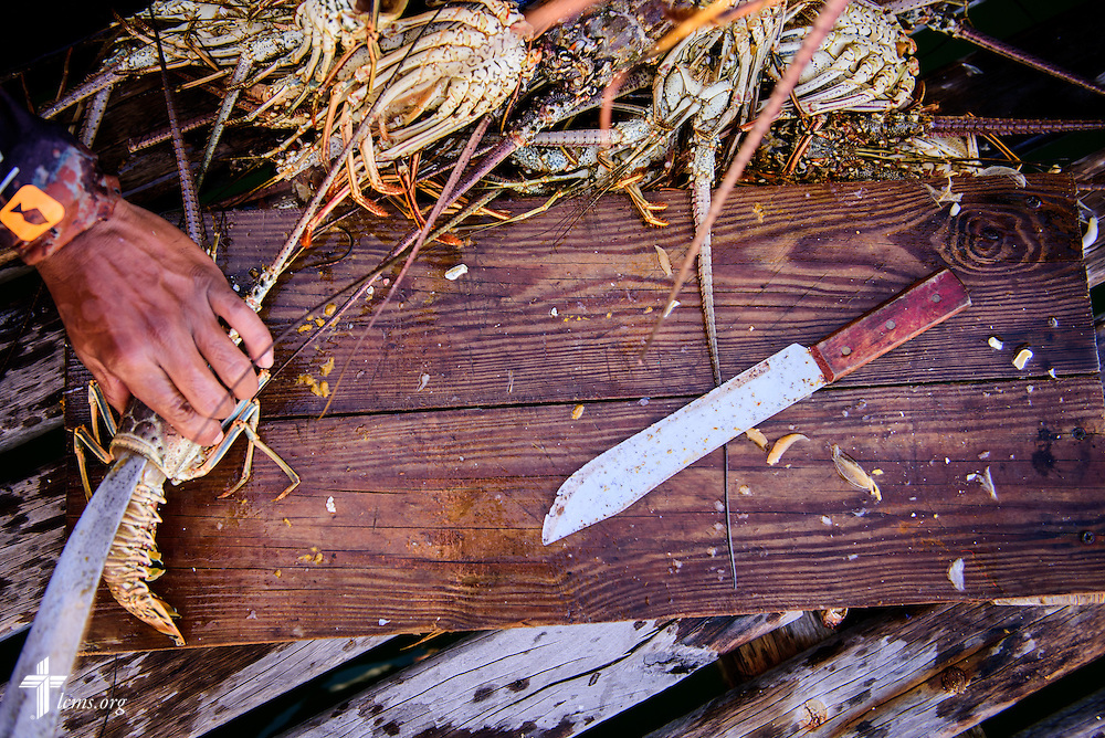 Fisherman process fresh lobsters at the pier on Wednesday, Sept. 28, 2016, in Placencia, Belize. The rich marine life provide an industry for local fishermen. LCMS Communications/Erik M. Lunsford