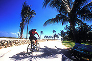 A mountain biker cycling in an exotic place on a sunny day. Florida USA