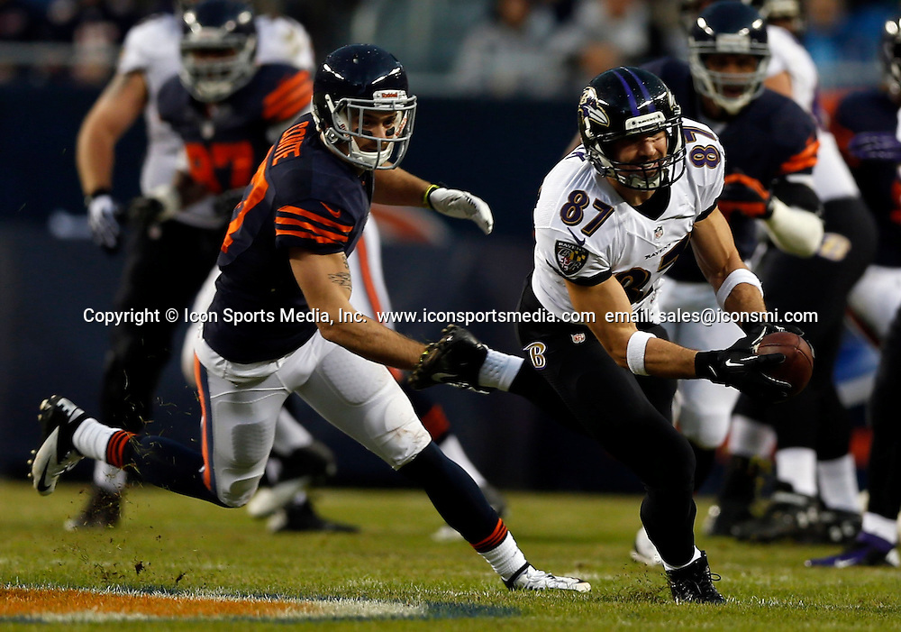 Nov. 17, 2013 - Chicago, IL, USA - Dallas Clark of the Baltimore Ravens catches a pass in front of Chris Conte of the Chicago Bears during the 1st quarter at Soldier Field in Chicago on Sunday, Nov. 17, 2013