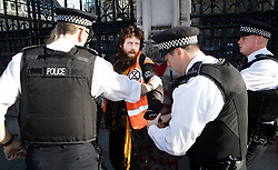 © Licensed to London News Pictures. 14/11/2018. London, UK. A vegan protestor is arrested after spray painting slogans at the Carriage Gate entrance to Parliament. Two people were arrested.Photo credit: Peter Macdiarmid/LNP
