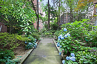 Garden at 430 East 56th Street