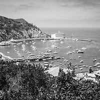 Catalina Island Avalon Harbor from above black and white photo. Includes the Catalina Casino theater, Avalon Pier, Holly Hill House, and Avalon city buildings. Beautiful Santa Catalina Island is a popular travel destination off the Southern California coast. Photo is high resolution. Copyright ⓒ 2017 Paul Velgos with All Rights Reserved.