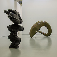 Tony Cragg, Musee d'Art Moderne de St Etienne - Sept 2013.<br />