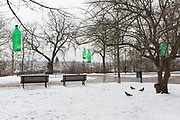 Green plastic bottles filled with food hang on branches for the benefit of wintering birds, left by locals in Letna Park (Letenske Sady), on 18th March, 2018, in Prague, the Czech Republic.