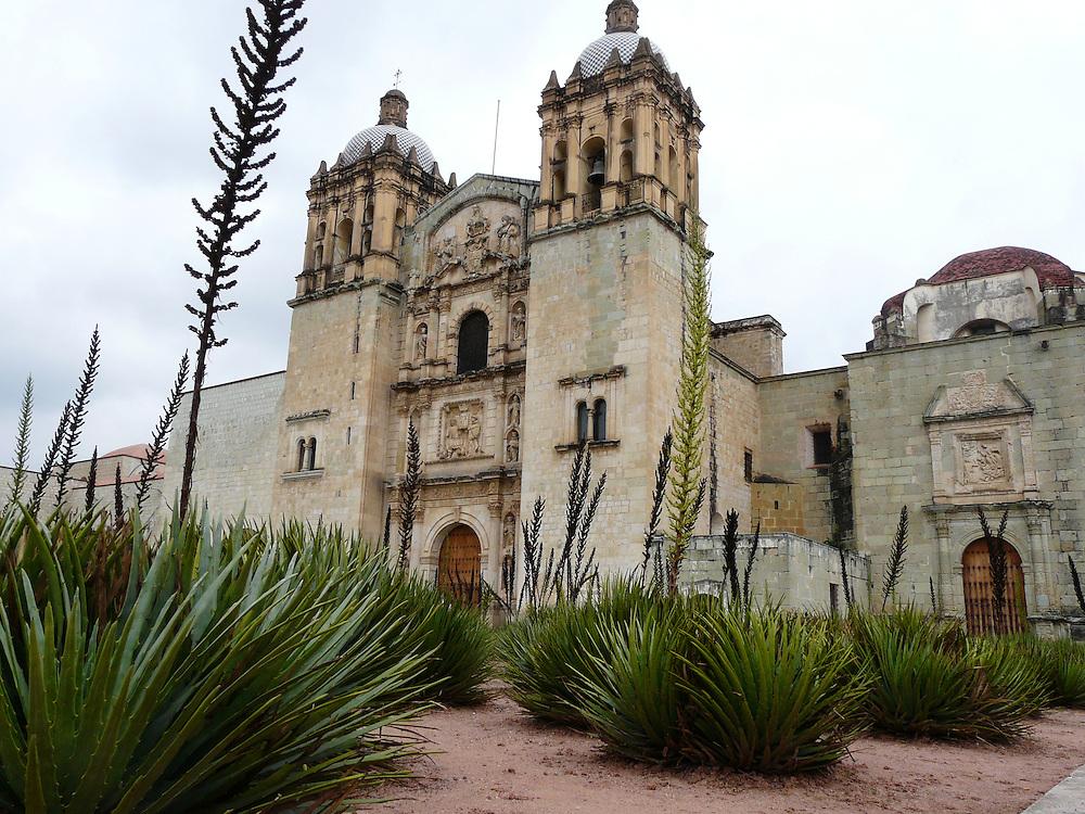 EN&gt; The colonial church of Santo Domingo in Oaxaca (Mexico), with a garden of local plants in the foreground | <br /> SP&gt; El templo colonial de Santo Domingo en Oaxaca (M&eacute;xico) y su jard&iacute;n de plantas locales en el primer plano