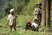 Madagascar, Madagascan family