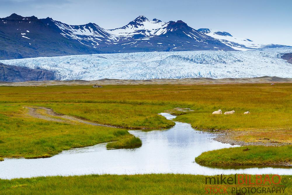 Glacier. Vatnajokull National Park. Iceland, Europe