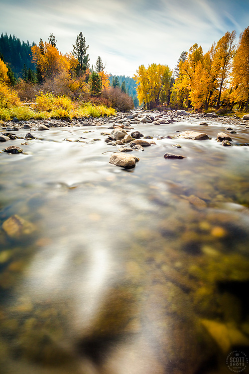 """Truckee River in Autumn 18""  - A very long exposure photo of Cottonwood trees and fall colors along Truckee River in Truckee, California."