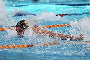 Wilrich Coetzee, Mens 50m butterfly, New Zealand Short Course Swimming Championships, Sir Owen G. Glenn National Aquatic Centre, AUT Millennium, Auckland. 11 August 2015. Copyright Photo: William Booth / www.photosport.nz