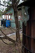 Horton's Hook, Shaw Island, Washington, US
