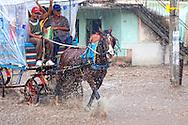 Coche de caballos in Holguin, Cuba during a flood.