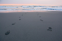 Shoe prints on Pacific Ocean sandy beach at sunset.