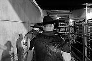 Rodeo 15, Sydney