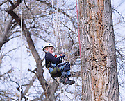 Jack Nawrocki and his father Tom took a Recreational tree climbing class near Denver, Colorado.