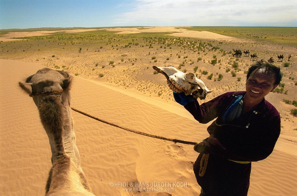 Mongolei, MNG, 2003: Kamel (Camelus bactrianus). Nomade auf dem Gipfel einer Sanddüne hält in der einen Hand sein Kamel an einem Strick, mit der anderen den Schädel eines Kamels. Überblick über die südliche Gobi. | Mongolia, MNG, 2003: Camel, Camelus bactrianus, nomade on a hilltop of a sand dune holding its camel on a rope and in the other hand a skull of a camel, overloook of the Gobi, South Gobi. |