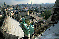 France. Paris elevated view from Notre dame cathedral. The apostles looking at Seine river and the south of Paris. view from the spire of Notre dame cathedral