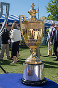 Henley on Thames, England, United Kingdom, Thursday, 04.07.19, the King's Cup, on loan to HRR from Australia, on the occasion of the Centenary, of the Peace Regatta 1919, on display, in the Stewards' Enclosure, Henley Royal Regatta,  Henley Reach, [©Karon PHILLIPS/Intersport Images]<br /> <br /> 09:39:16 1919 - 2019, Royal Henley Peace Regatta Centenary,