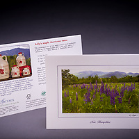 Our only photo greeting card featuring a non-native species. The garden lupine attracts visitors to the White Mountains of NH every summer. This card is a custom design for Polly's Pancake Parlor, located in the same town where this scene was photographed, in Sugar Hill, NH.  Also available as a fine art print. <br />
