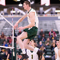 3rd year middle blocker Cody Caldwell (4) of the Regina Cougars in action during Men's Volleyball home game on November 18 at Centre for Kinesiology, Health and Sport. Credit: Arthur Ward/Arthur Images