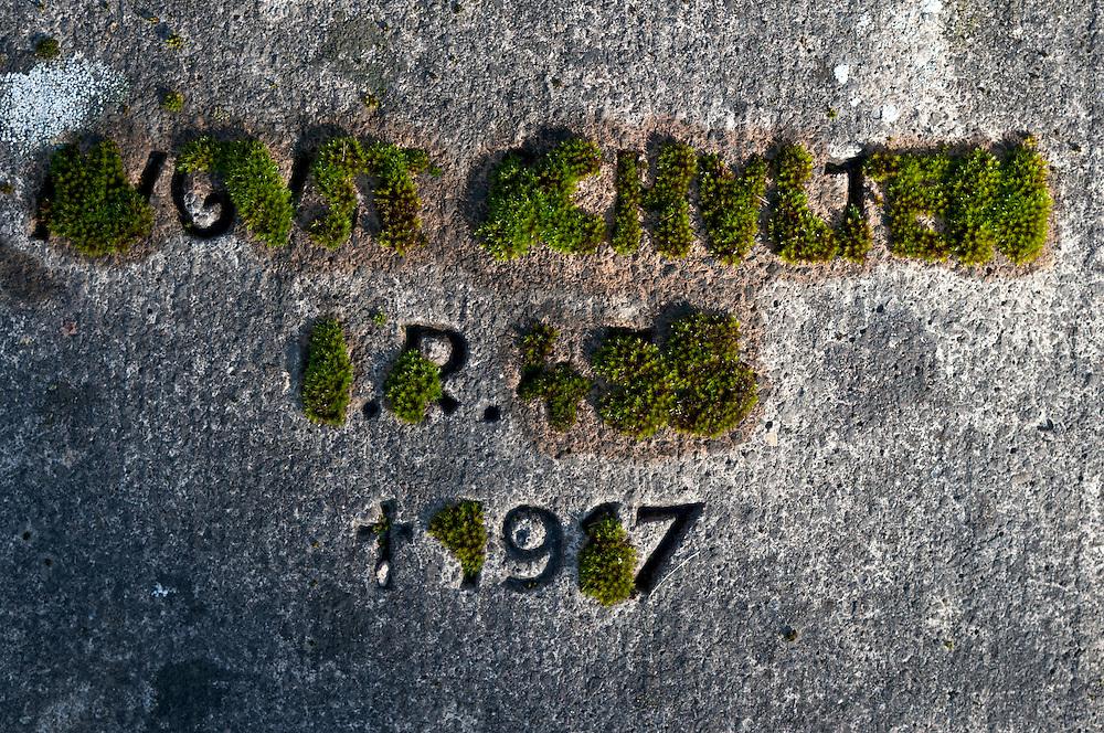 DEU,NRW,Köln,Deutschland,Vermooster Grabstein auf dem Nordfriedhof Köln eines im ersten Weltkrieg gestorbenen Soldaten   |  Cologne, grave of an soldirr of the first world war   |