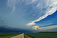 A severe thunderstorm approaches over a corn field near Morton, Illinois. A shelf cloud can be seen on the lower left and the anvil extends to the top right.<br /> <br /> Date Taken: June 23, 2013