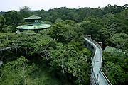 Manaus_AM, Brasil...Hotel Ariau Amazon Tower em Manaus, Amazonas...The Ariau Amazon Tower hotel is the Largest Treetop Hotel in the World, Amazonas...Foto: Joao Marcos Rosa / Agencia Nitro