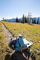 A hiker on the Pacific Crest Trail checking his map.  Washington Cascades, USA.