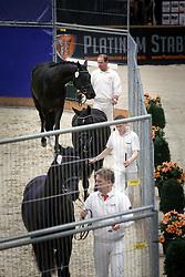 Groepspresentatie<br /> KWPN Stallion Selection - 's Hertogenbosch 2014<br /> © Dirk Caremans