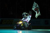 KELOWNA, CANADA - NOVEMBER 29: Rocky Racoon the mascot of the Kelowna Rockets enters the ice against the Prince George Cougars on November 29, 2017 at Prospera Place in Kelowna, British Columbia, Canada.  (Photo by Marissa Baecker/Shoot the Breeze)  *** Local Caption ***