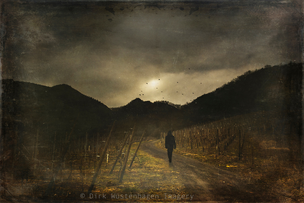 Man walking through a vineyard uphill - manipulated and texturized photograph