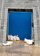© Licensed to London News Pictures. 11/11/2014. Southsea, UK. Sandbags lie behind the Pyramids centre. Wet and windy weather today, 11 November 2014, at Southsea, Portsmouth. The Met Office have issued weather warnings in some parts of the UK. Photo credit : Stephen Simpson/LNP