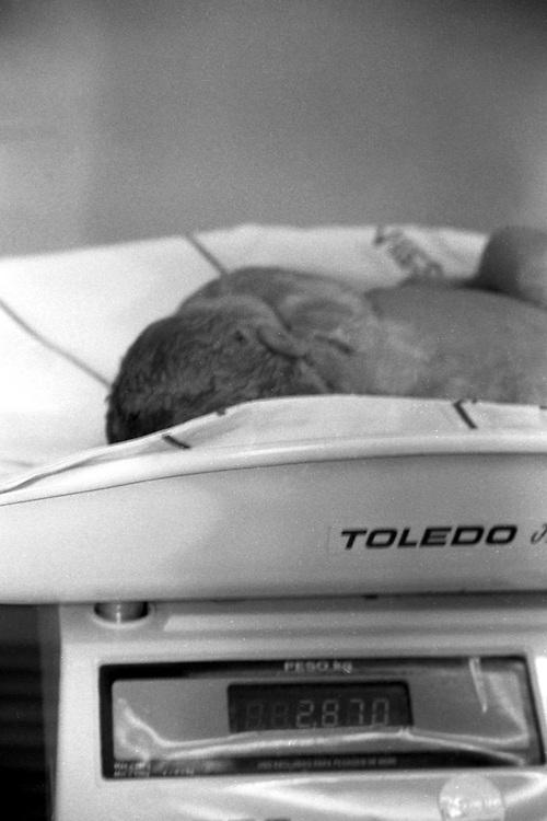 Belo Horizonte_MG, Brasil...Pesagem de um recem nascido...Weighing a newborn a newborn...FOTO: BRUNO MAGALHAES /  NITRO