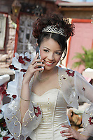 Bride using mobile phone, portrait