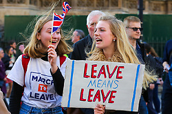 March 29, 2019 - London, England, U.K. - Thousands of Leave campaigners outside Parliament protesting against the delay to Brexit, on the day the UK had been due to leave the European Union. British Prime Minister May's Brexit deal has been third defeat third time by a margin of 58 votes. (Credit Image: © Dinendra Haria/London News Pictures via ZUMA Wire)