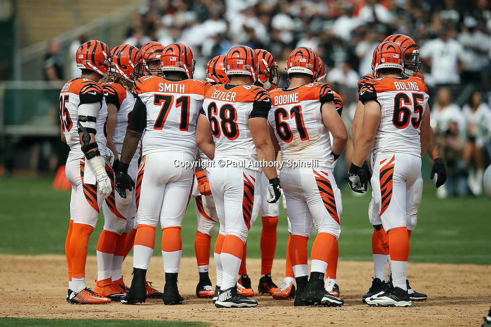 The Cincinnati Bengals offense huddles to call a play during the 2015 NFL week 1 regular season football game against the Oakland Raiders on Sunday, Sept. 13, 2015 in Oakland, Calif. The Bengals won the game 33-13. (©Paul Anthony Spinelli)