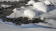 Ice formed elaborate designs along the edge of the open water in Bagley Creek.