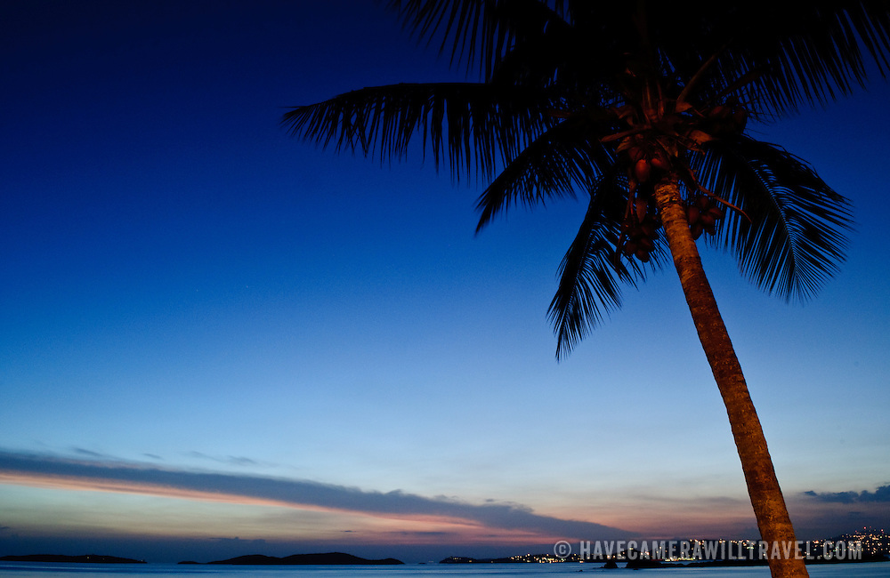 Sunset in the Caribbean with a single palm tree and deep blue sky, with copyspace.