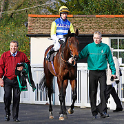 Buxfizz and Jim Crowley winning the 12.20 race
