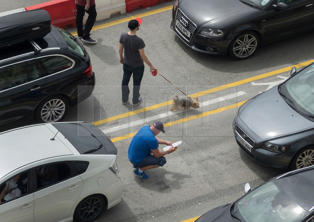 © Licensed to London News Pictures. 23/07/2016. Dover, UK.  A driver walks his dog as another reads a map as they wait in a queue of cars trying get into the port of Dover. Long delays are currently being experienced after increased security checks were put in place. Photo credit: Peter Macdiarmid/LNP