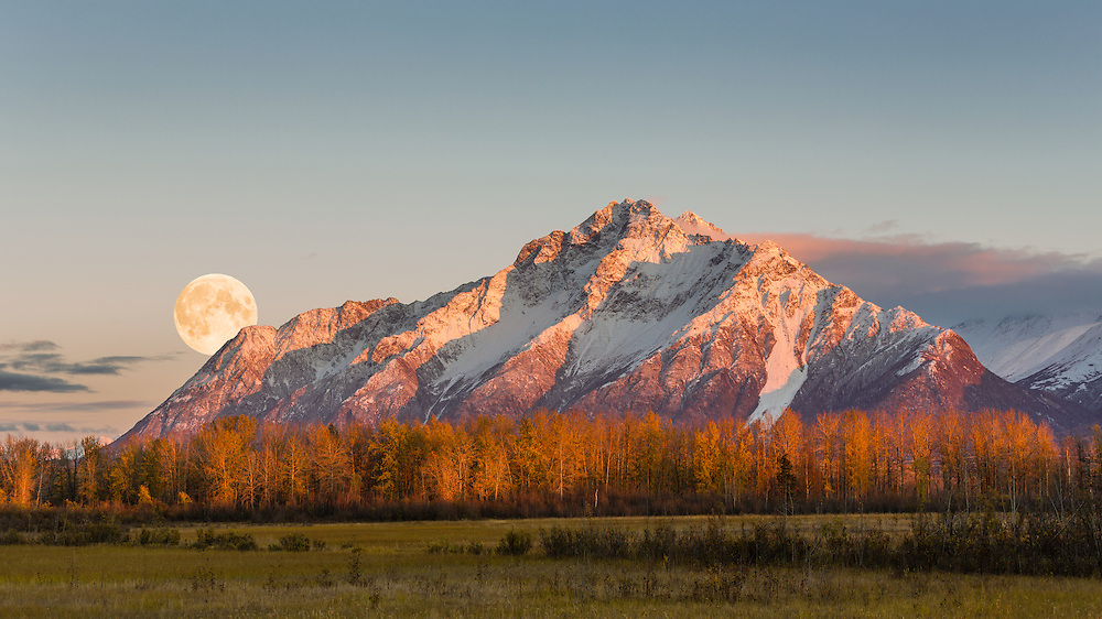Alpenglow on Pioneer Peak at sunset with rising full moon at Palmer Hay Flats in Southcentral Alaska. Evening. Autumn. Composite.