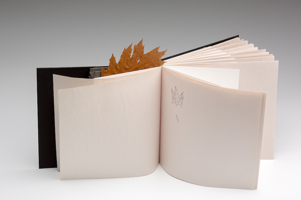 Artists' Book by Jaeyoung Bae