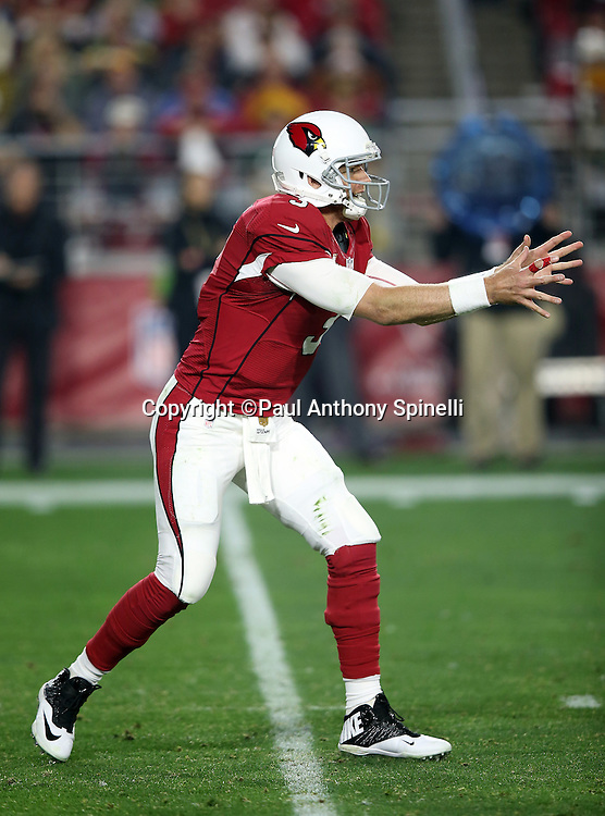 Arizona Cardinals quarterback Carson Palmer (3) waits for the snap in the shotgun formation while the index finger on his right, throwing hand, is taped with red tape during the NFL NFC Divisional round playoff football game against the Green Bay Packers on Saturday, Jan. 16, 2016 in Glendale, Ariz. The Cardinals won the game in overtime 26-20. (©Paul Anthony Spinelli)