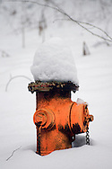 Orenge Fire Hydrant in snow.