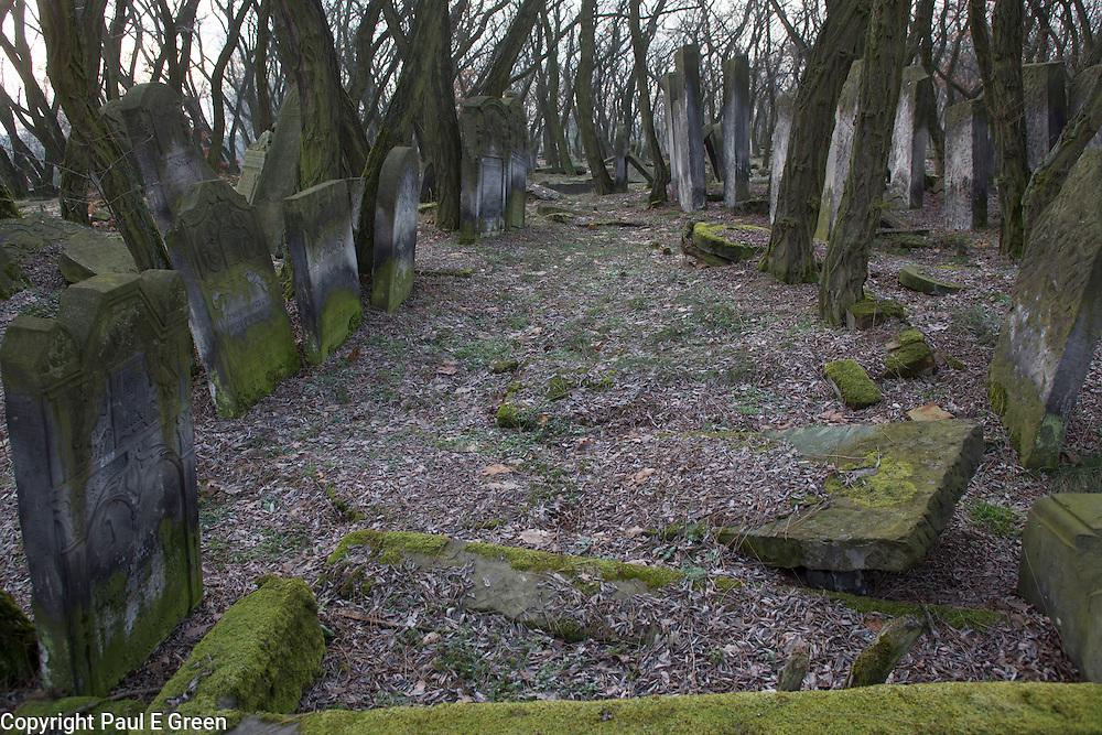 Zdunska Wola Poland Jewish Cemetery
